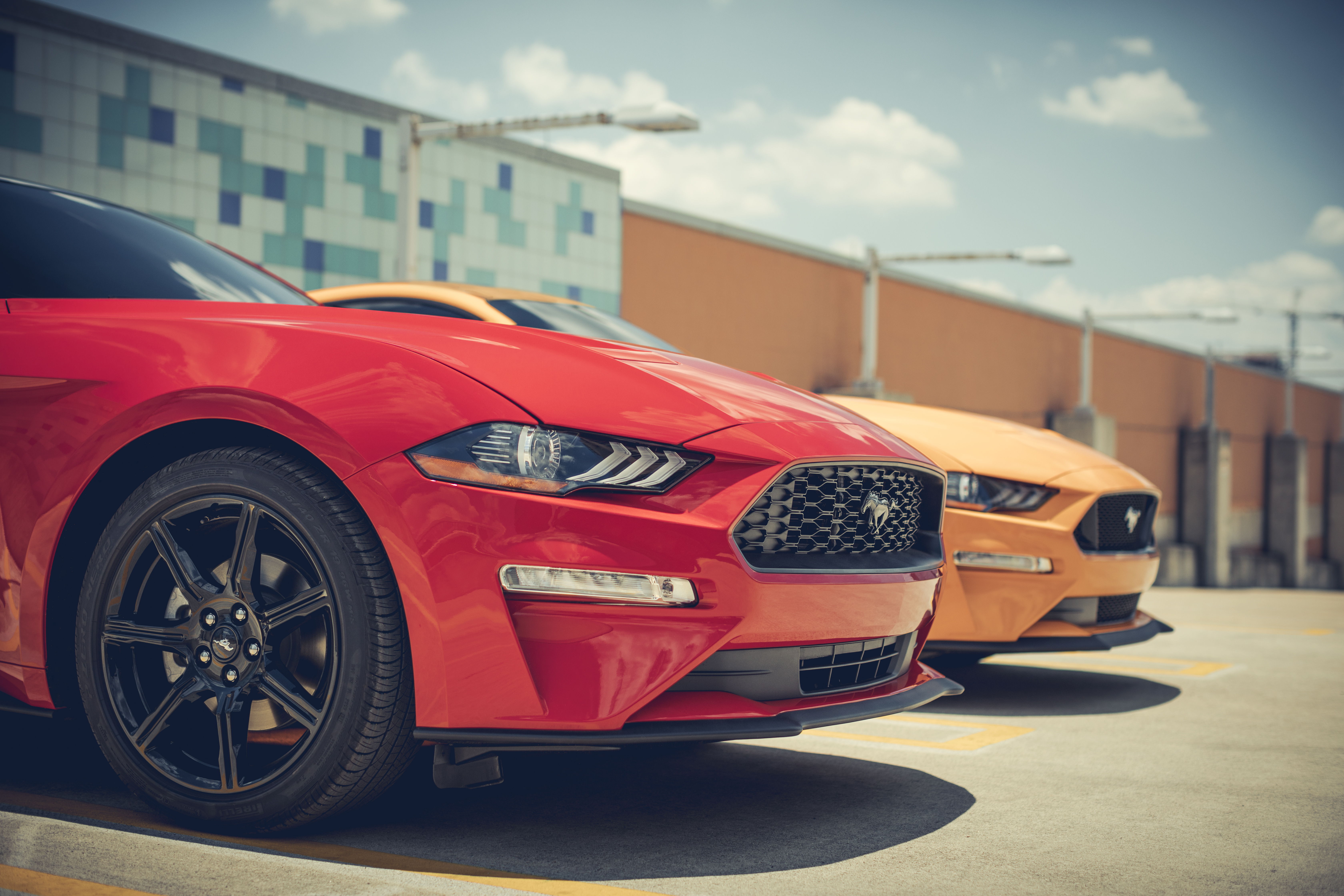 Lease A Ford Mustang Oxmoor Ford Louisville Ky