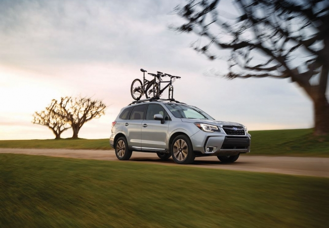 Subaru Foresters available in Burlington, WA at Dwayne Lane's Skagit Subaru